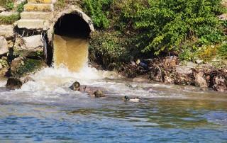 cyanide wastewater discharge
