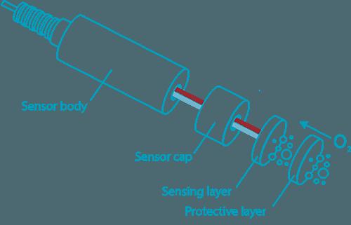 Optical Dissolved Oxygen Diagram Web Sensorex